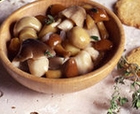 spanish marinated mushrooms