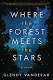 where forest meets stars